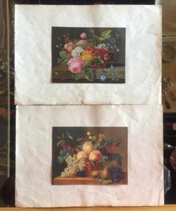 Натюрморт, цветные литографии, середина XIX века, Франция.